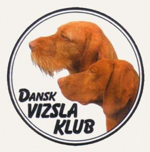 dansk-vizsla-klub